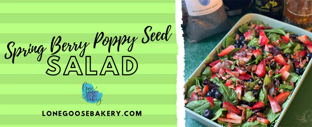 Spring-Berry-Poppy-Seed-Salad-Banner