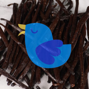 Madagascar vanilla beans in a pile with a blue bird picture