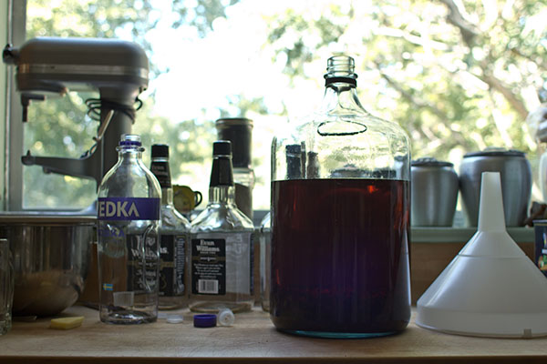 A jug of vanilla extract distilling